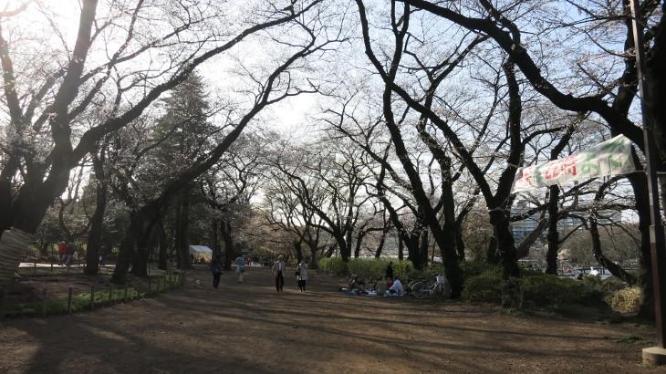 3月21日(木)