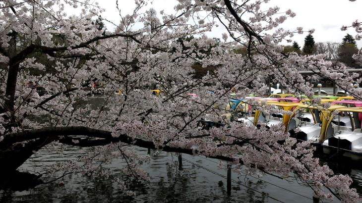 4月2日(水)